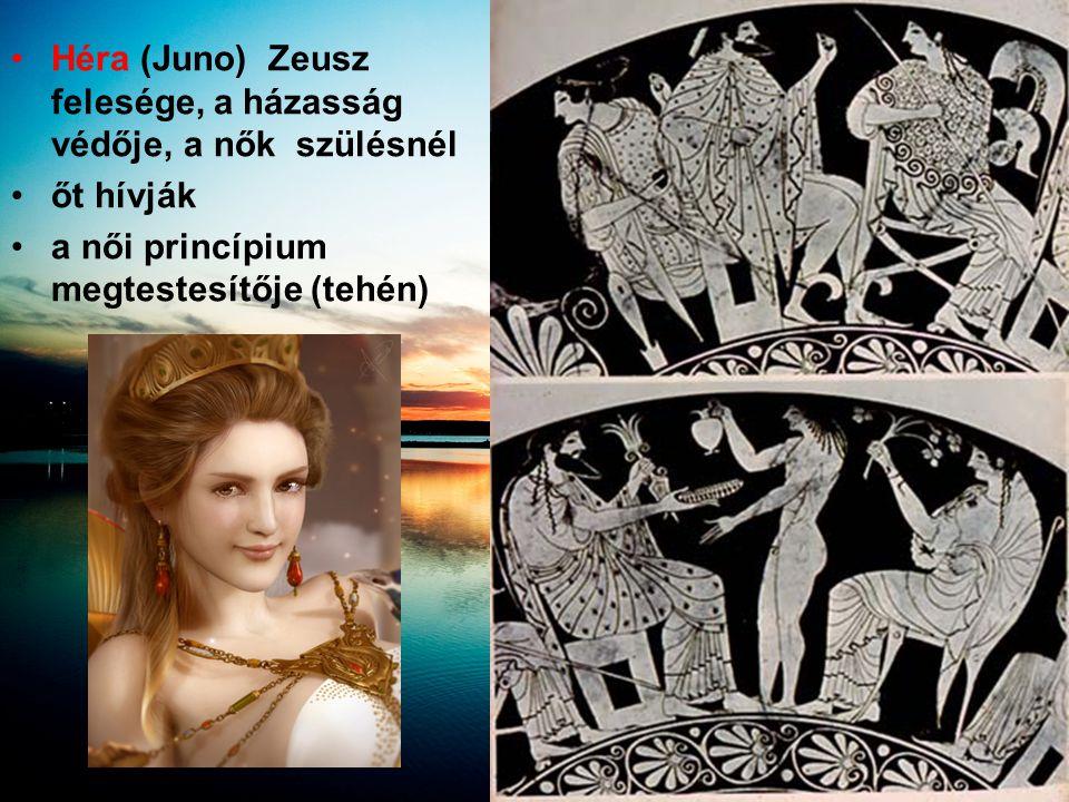 •Héra (Juno) Zeusz felesége, a házasság védője, a nők szülésnél •őt hívják •a női princípium megtestesítője (tehén)