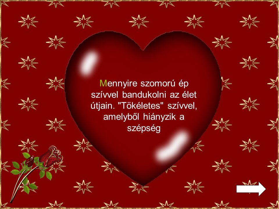 Mert a valaha tökéletes szíve most az öreg szívének a szeretetétől dobogott.