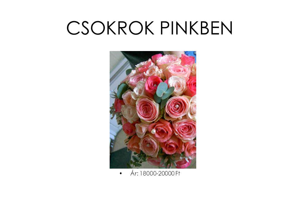 CSOKROK PINKBEN •Ár: 18000-20000 Ft