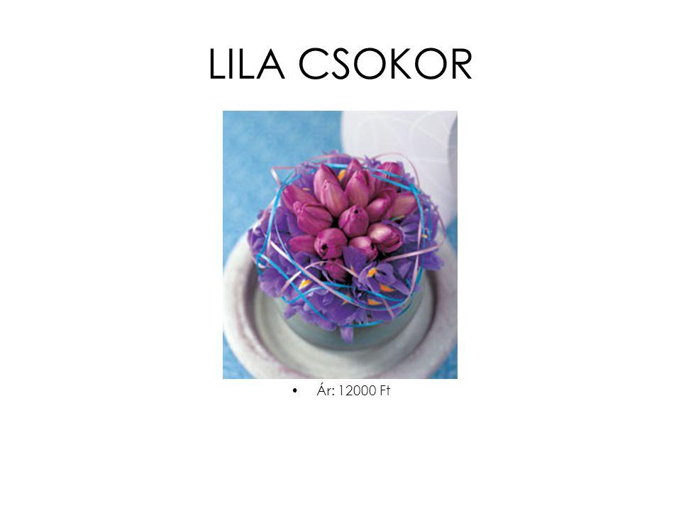 LILA CSOKOR •Ár: 12000 Ft