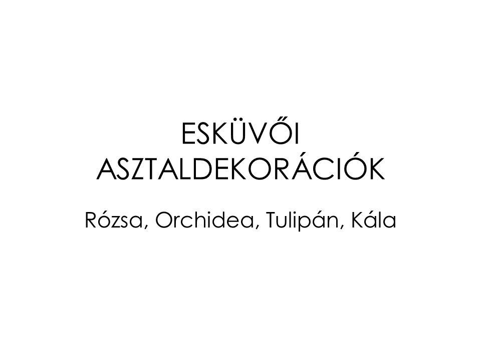 ESKÜVŐI ASZTALDEKORÁCIÓK Rózsa, Orchidea, Tulipán, Kála
