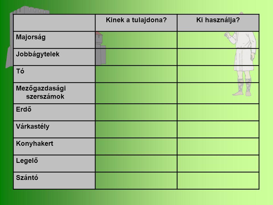 Kinek a tulajdona?Ki használja? Majorság Jobbágytelek Tó Mezőgazdasági szerszámok Erdő Várkastély Konyhakert Legelő Szántó