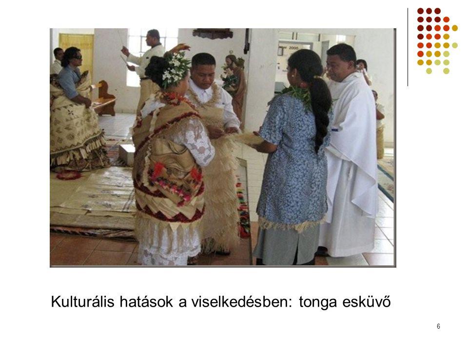 6 Kulturális hatások a viselkedésben: tonga esküvő