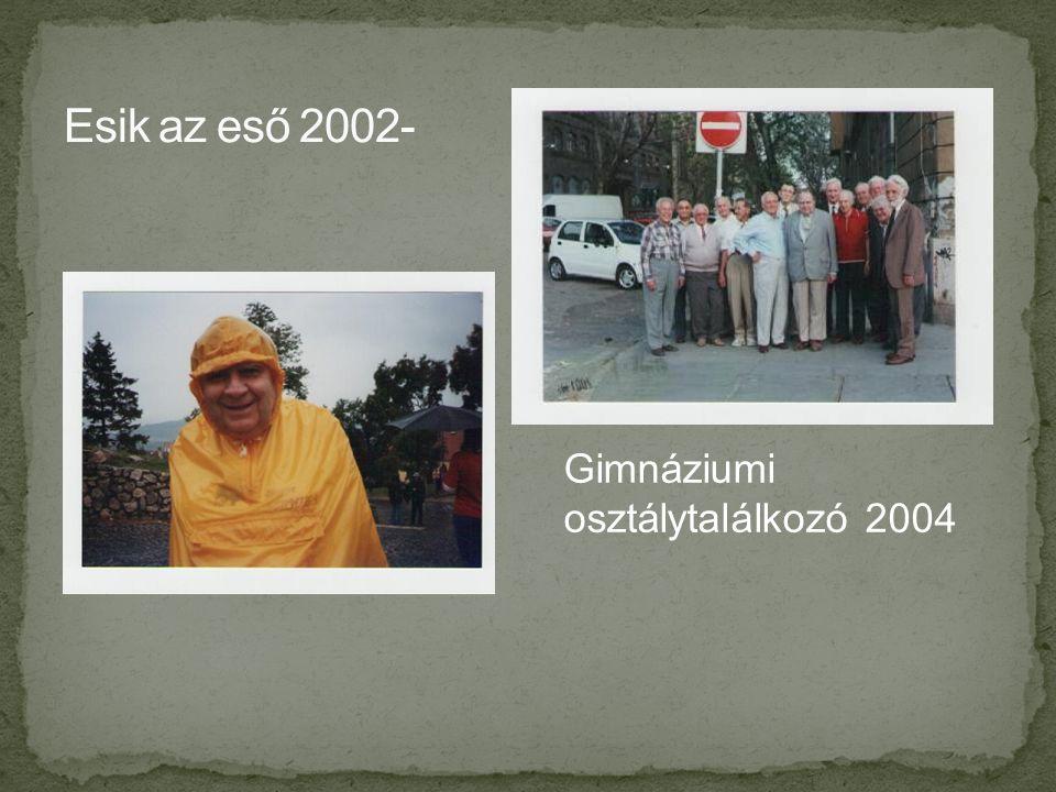 Gimnáziumi osztálytalálkozó 2004