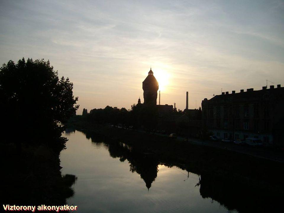 Temes folyó ősz elején