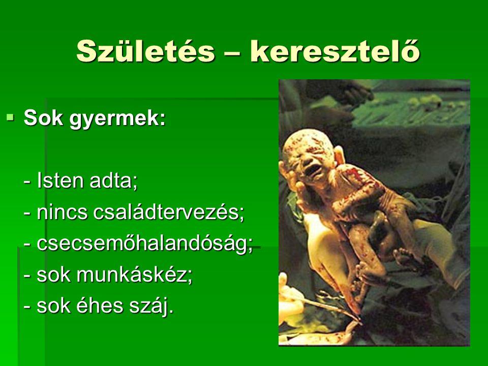 Születés – keresztelő  Sok gyermek: - Isten adta; - nincs családtervezés; - csecsemőhalandóság; - sok munkáskéz; - sok éhes száj.