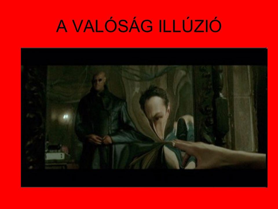 A VALÓSÁG ILLÚZIÓ