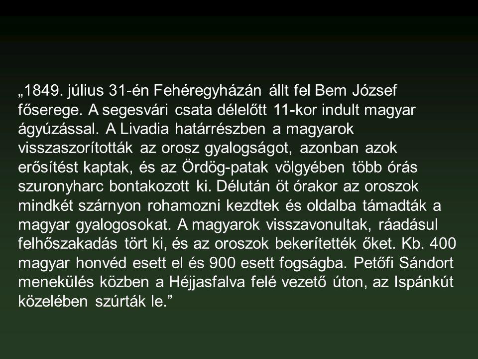 """""""1849. július 31-én Fehéregyházán állt fel Bem József főserege. A segesvári csata délelőtt 11-kor indult magyar ágyúzással. A Livadia határrészben a m"""