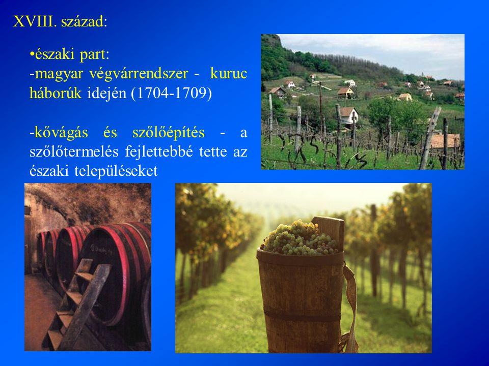 •északi part: -magyar végvárrendszer - kuruc háborúk idején (1704-1709) -kővágás és szőlőépítés - a szőlőtermelés fejlettebbé tette az északi települé
