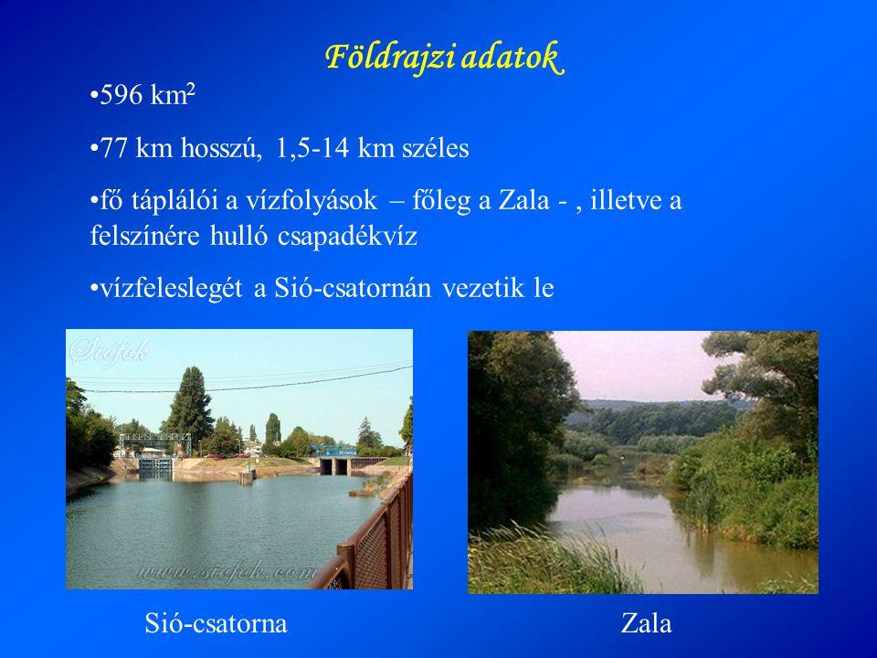 •596 km 2 •77 km hosszú, 1,5-14 km széles •fő táplálói a vízfolyások – főleg a Zala -, illetve a felszínére hulló csapadékvíz •vízfeleslegét a Sió-csa