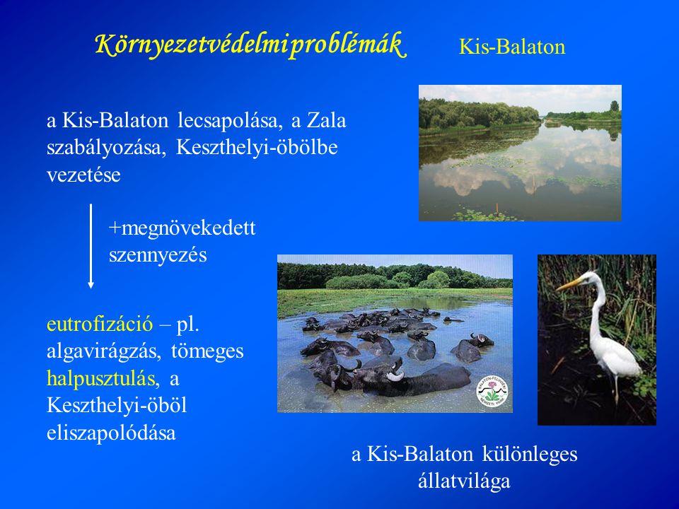 a Kis-Balaton különleges állatvilága Kis-Balaton a Kis-Balaton lecsapolása, a Zala szabályozása, Keszthelyi-öbölbe vezetése Környezetvédelmi problémák
