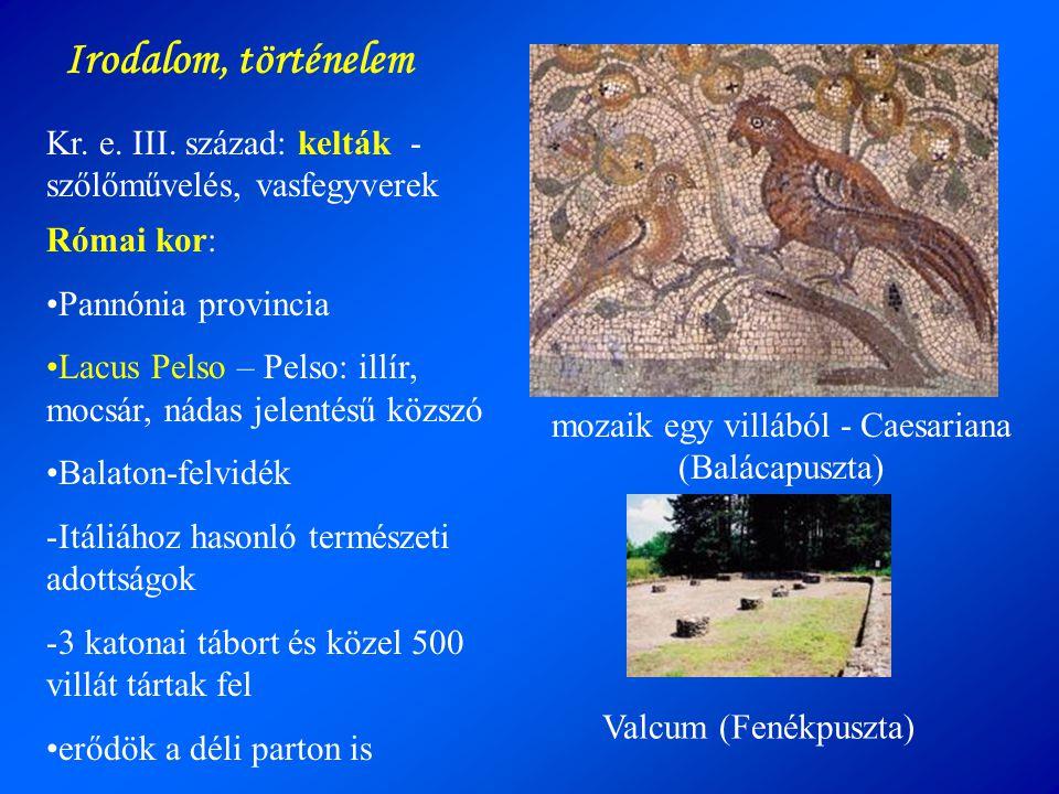 Kr. e. III. század: kelták - szőlőművelés, vasfegyverek Római kor: •Pannónia provincia •Lacus Pelso – Pelso: illír, mocsár, nádas jelentésű közszó •Ba