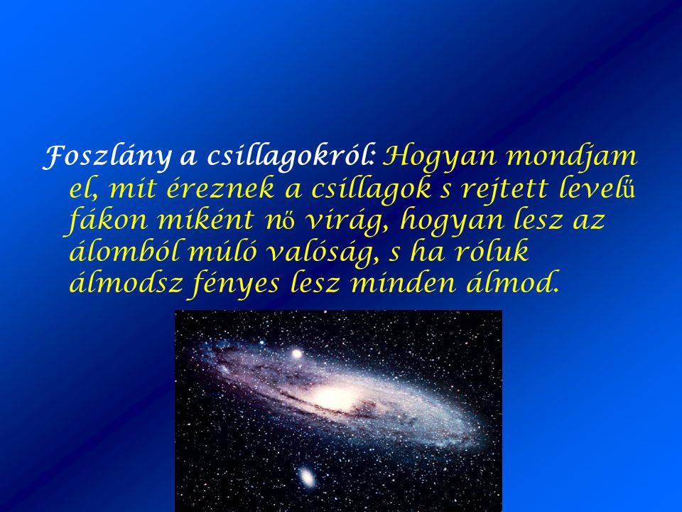 Foszlány a csillagokról: Hogyan mondjam el, mit éreznek a csillagok s rejtett level ű fákon miként n ő virág, hogyan lesz az álomból múló valóság, s h