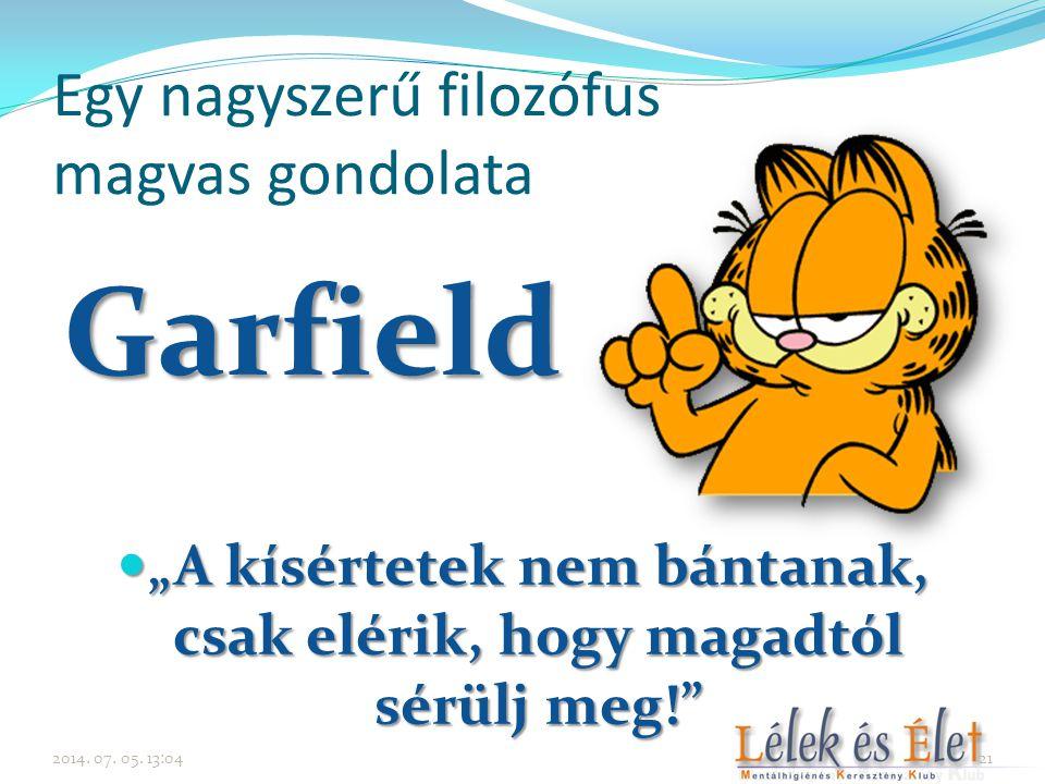 """Egy nagyszerű filozófus magvas gondolata Garfield  """"A kísértetek nem bántanak, csak elérik, hogy magadtól sérülj meg!"""" 2014. 07. 05. 13:0621"""
