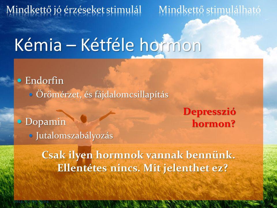 Kémia – Kétféle hormon  Endorfin  Örömérzet, és fájdalomcsillapítás  Dopamin  Jutalomszabályozás 2014. 07. 05. 13:064 Csak ilyen hormnok vannak be
