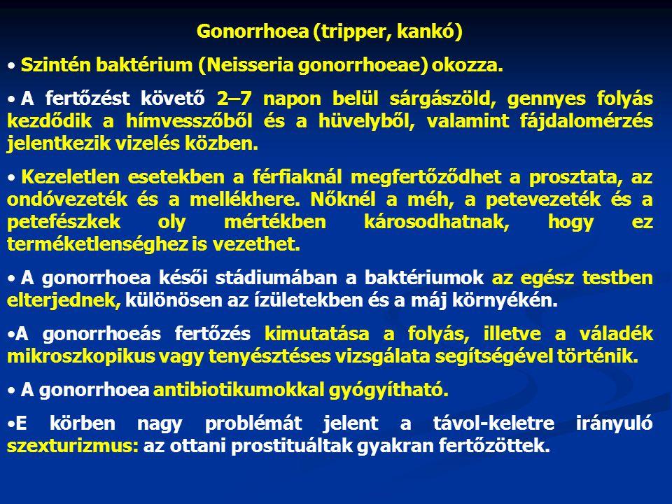 Gonorrhoea (tripper, kankó) • Szintén baktérium (Neisseria gonorrhoeae) okozza. • A fertőzést követő 2–7 napon belül sárgászöld, gennyes folyás kezdőd
