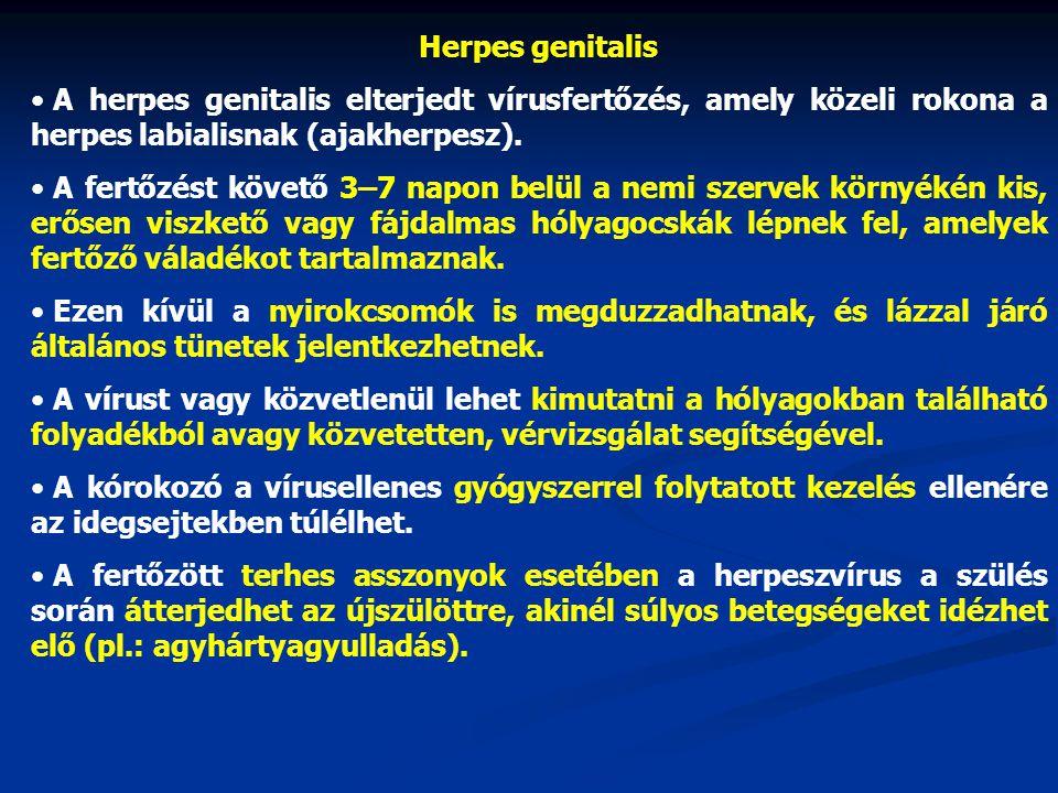 Herpes genitalis • A herpes genitalis elterjedt vírusfertőzés, amely közeli rokona a herpes labialisnak (ajakherpesz). • A fertőzést követő 3–7 napon