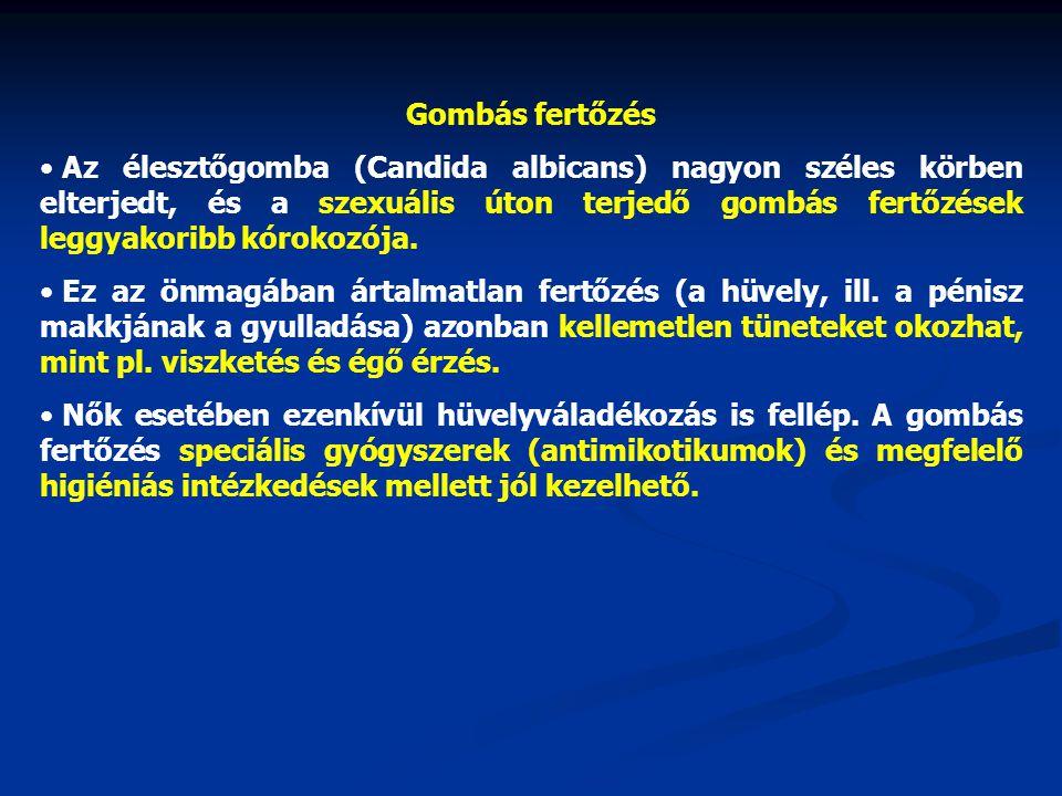 Gombás fertőzés • Az élesztőgomba (Candida albicans) nagyon széles körben elterjedt, és a szexuális úton terjedő gombás fertőzések leggyakoribb kóroko