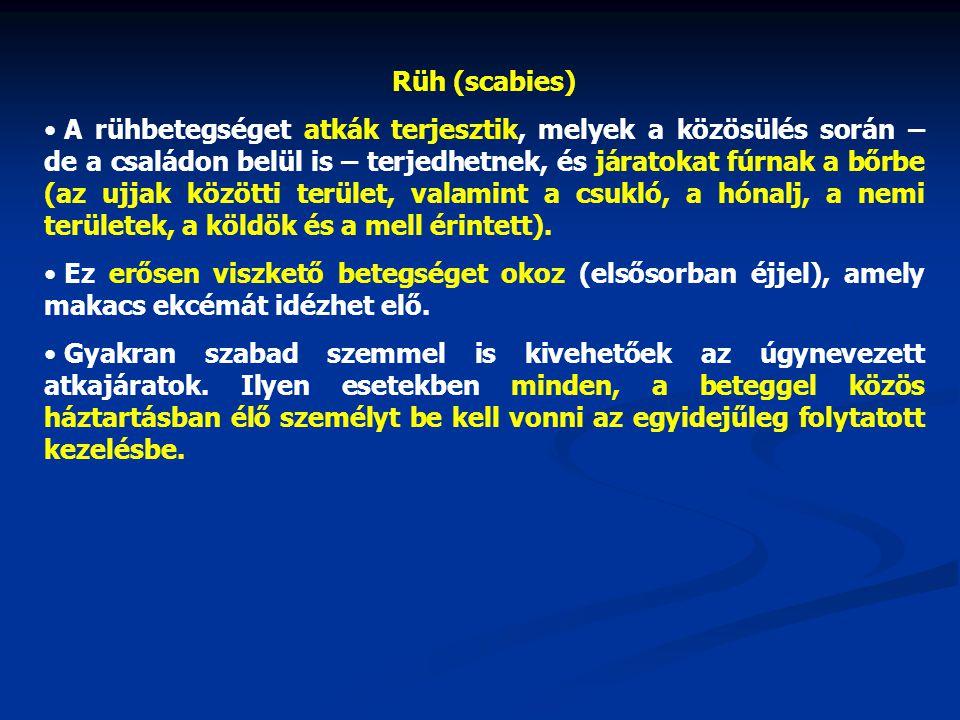 Rüh (scabies) • A rühbetegséget atkák terjesztik, melyek a közösülés során – de a családon belül is – terjedhetnek, és járatokat fúrnak a bőrbe (az uj