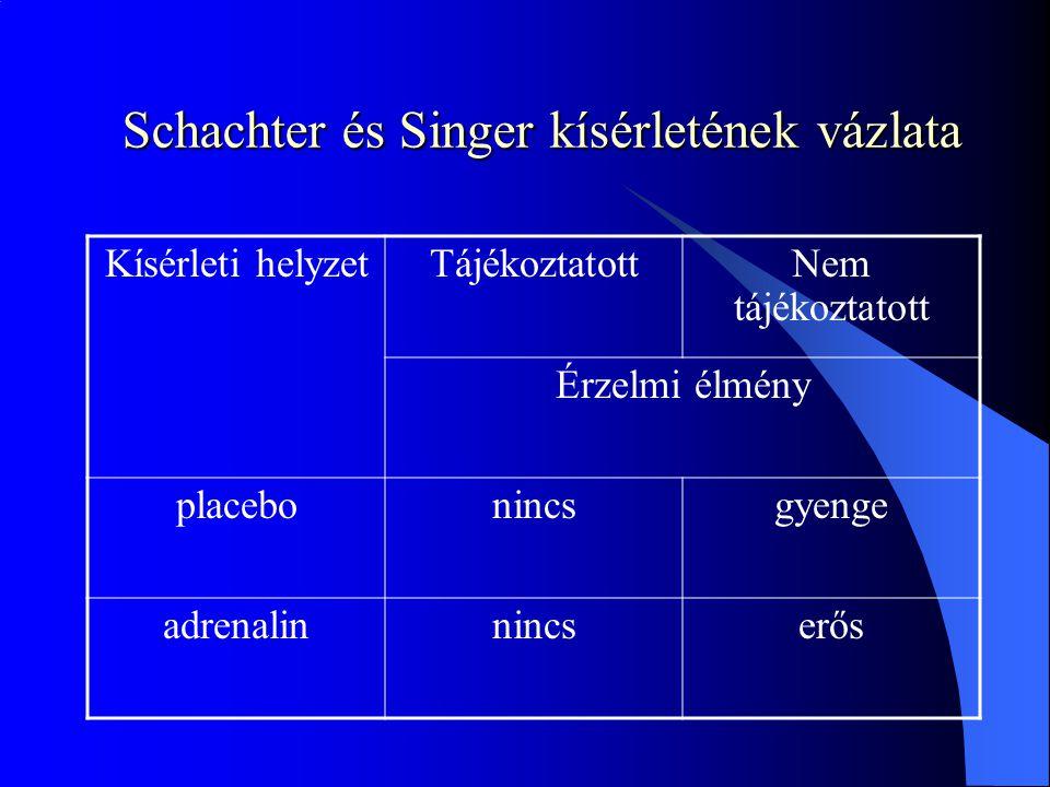 Schachter és Singer kísérletének vázlata Kísérleti helyzetTájékoztatottNem tájékoztatott Érzelmi élmény placebonincsgyenge adrenalinnincserős