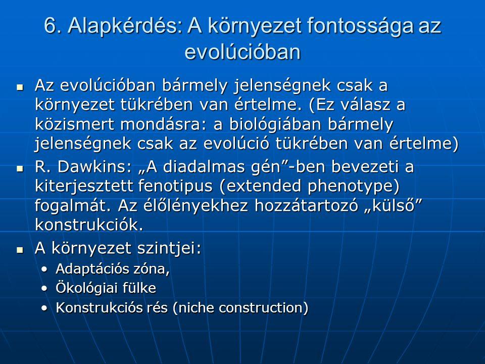 6. Alapkérdés: A környezet fontossága az evolúcióban  Az evolúcióban bármely jelenségnek csak a környezet tükrében van értelme. (Ez válasz a közismer