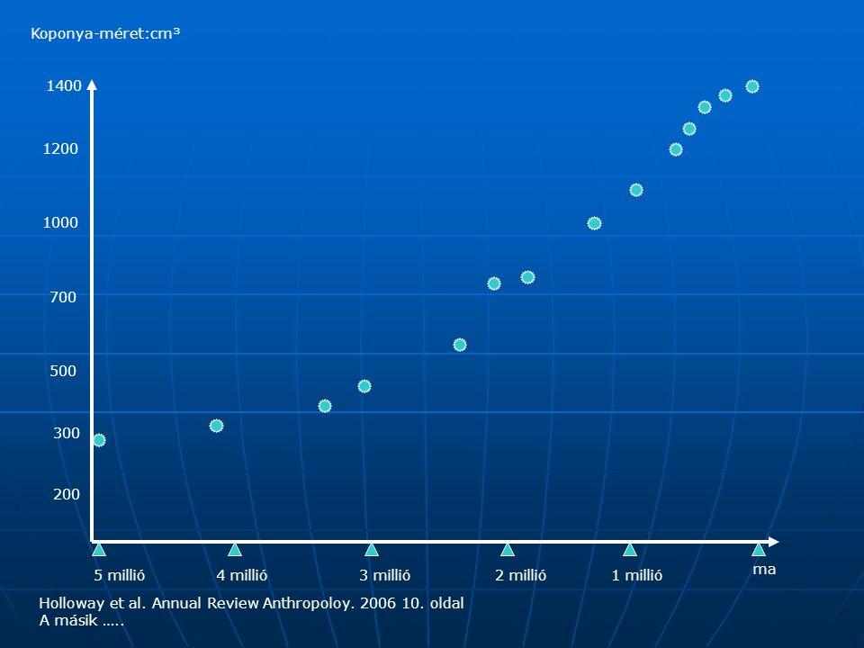 5 millió4 millió3 millió1 millió2 millió ma 1000 500 200 300 700 1200 1400 Koponya-méret:cm³ Holloway et al.