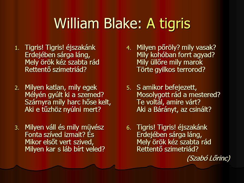 William Blake: A tigris 1.Tigris. Tigris.