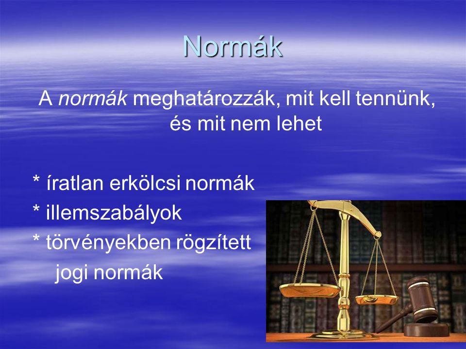 10 Normák A normák meghatározzák, mit kell tennünk, és mit nem lehet * íratlan erkölcsi normák * illemszabályok * törvényekben rögzített jogi normák