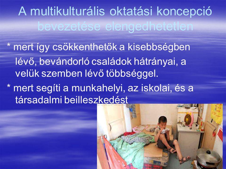 20 A multikulturális oktatási koncepció bevezetése elengedhetetlen * mert így csökkenthetők a kisebbségben lévő, bevándorló családok hátrányai, a velü