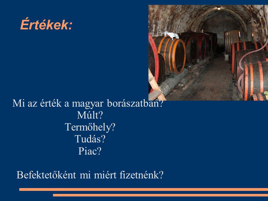 Értékek: Mi az érték a magyar borászatban. Múlt. Termőhely.