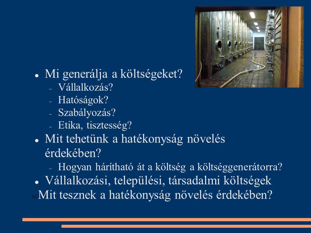 Termék- és termelés- fejlesztés:  Hogyan dönt ma a beruházásairól egy magyar borászat.
