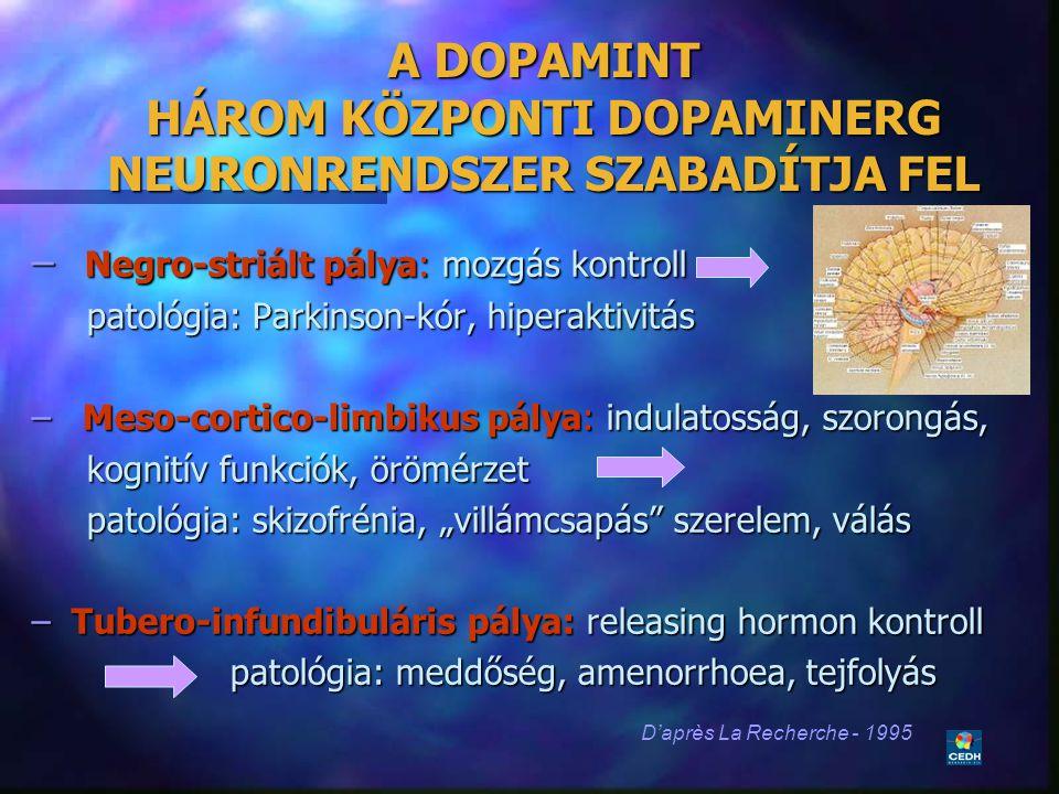 19 A DOPAMINT HÁROM KÖZPONTI DOPAMINERG NEURONRENDSZER SZABADÍTJA FEL – Negro-striált pálya: mozgás kontroll patológia: Parkinson-kór, hiperaktivitás