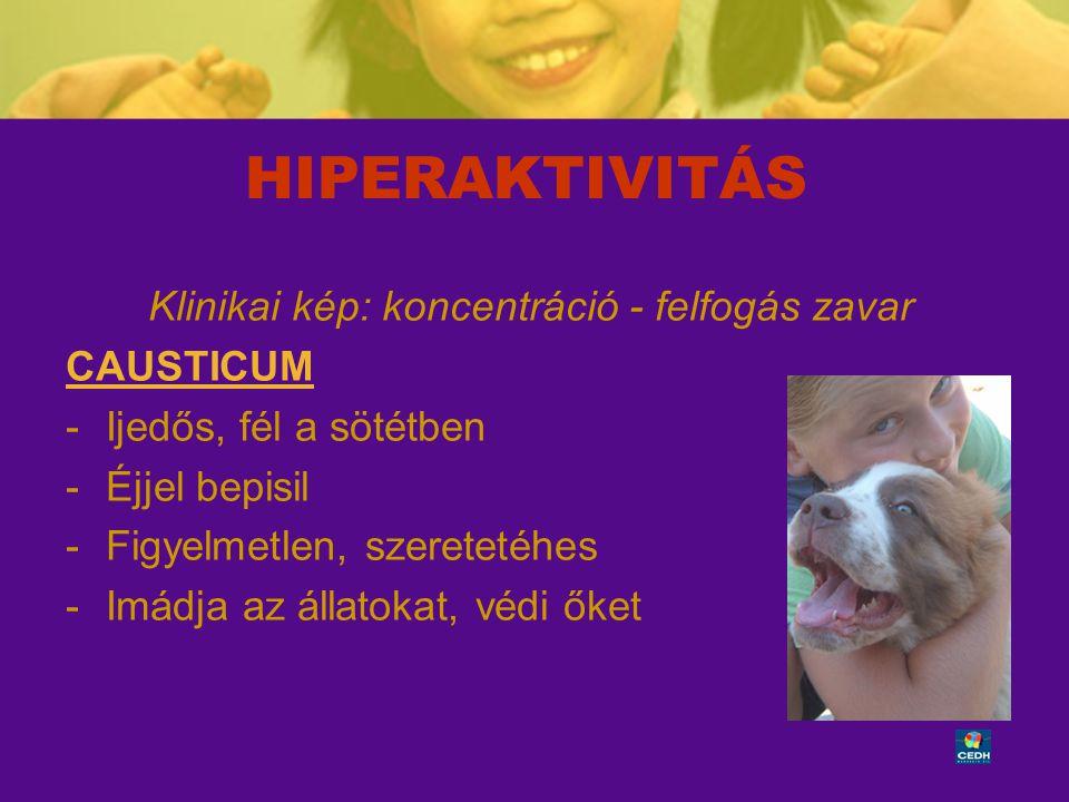 41 HIPERAKTIVITÁS Klinikai kép: koncentráció - felfogás zavar CAUSTICUM -Ijedős, fél a sötétben -Éjjel bepisil -Figyelmetlen, szeretetéhes -Imádja az