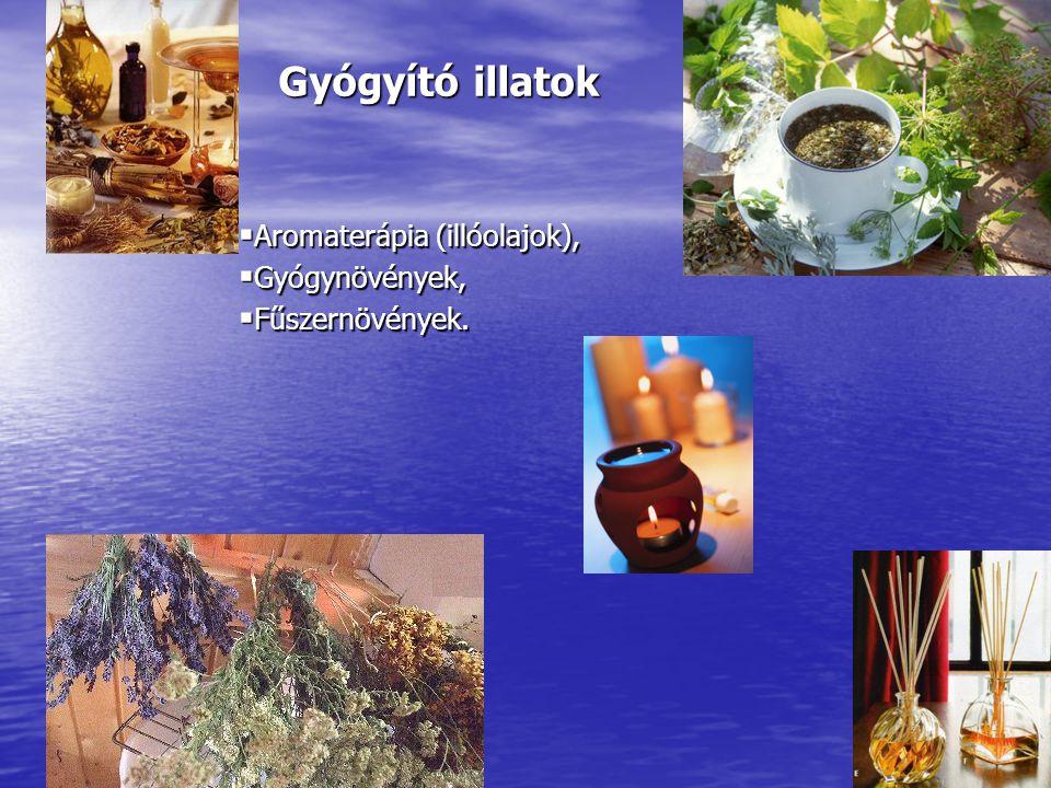 Gyógyító illatok  Aromaterápia (illóolajok),  Gyógynövények,  Fűszernövények.