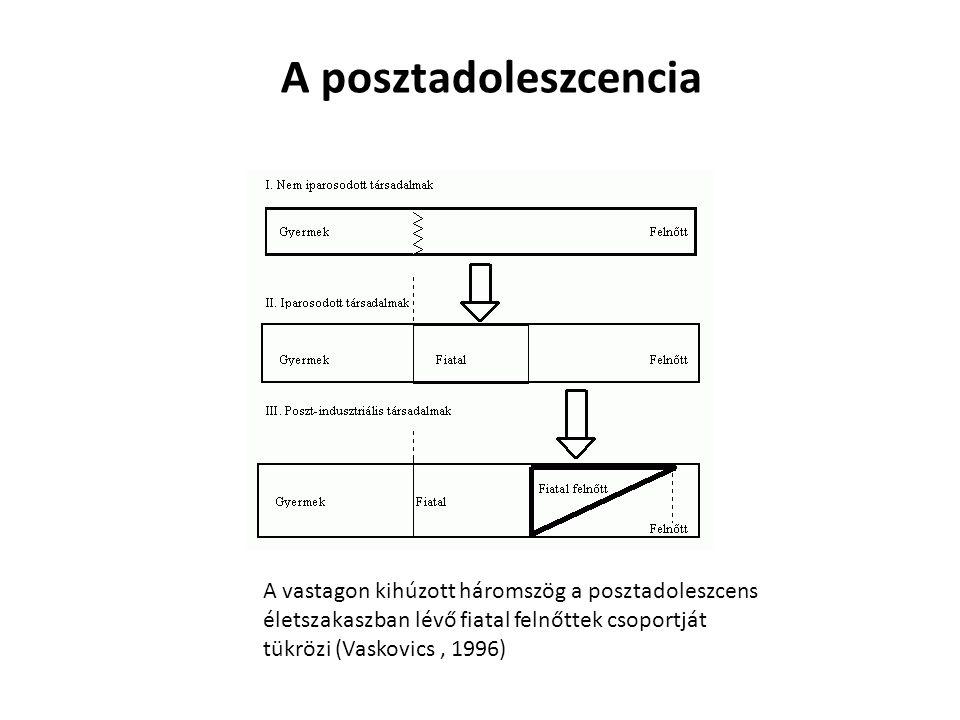 A vastagon kihúzott háromszög a posztadoleszcens életszakaszban lévő fiatal felnőttek csoportját tükrözi (Vaskovics, 1996) A posztadoleszcencia