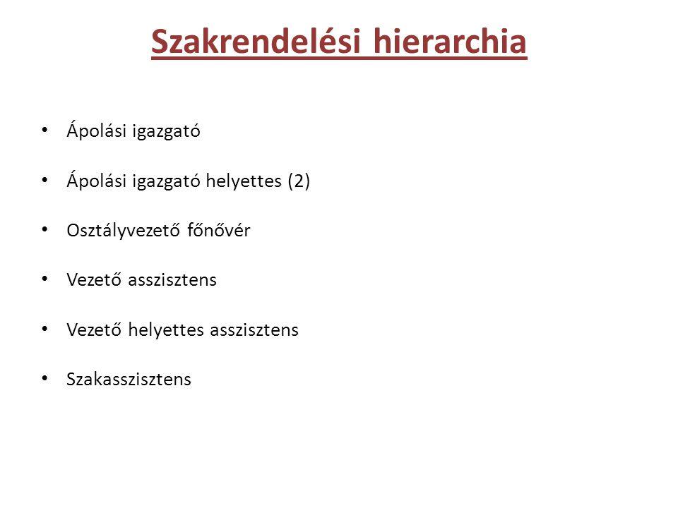 Szakrendelési hierarchia • Ápolási igazgató • Ápolási igazgató helyettes (2) • Osztályvezető főnővér • Vezető asszisztens • Vezető helyettes asszisztens • Szakasszisztens