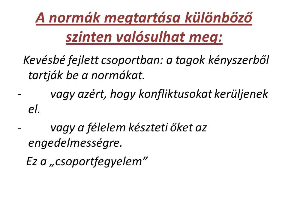 A normák megtartása különböző szinten valósulhat meg: Kevésbé fejlett csoportban: a tagok kényszerből tartják be a normákat.
