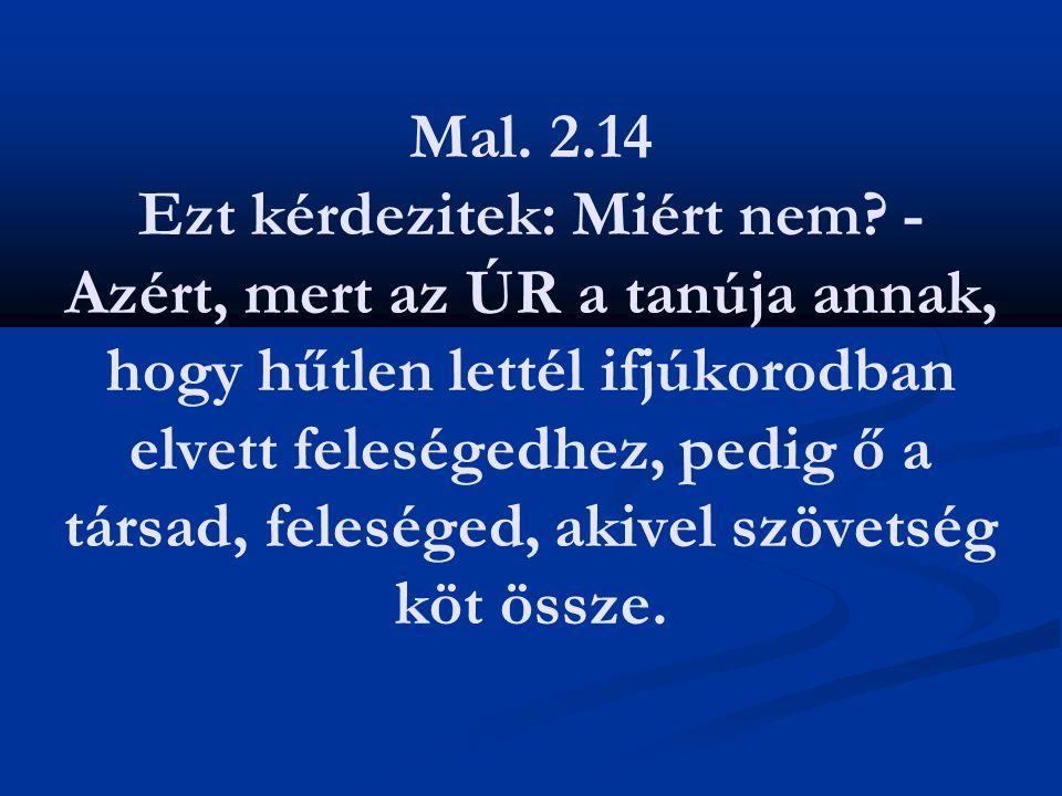 Mal. 2.14 Ezt kérdezitek: Miért nem? - Azért, mert az ÚR a tanúja annak, hogy hűtlen lettél ifjúkorodban elvett feleségedhez, pedig ő a társad, felesé