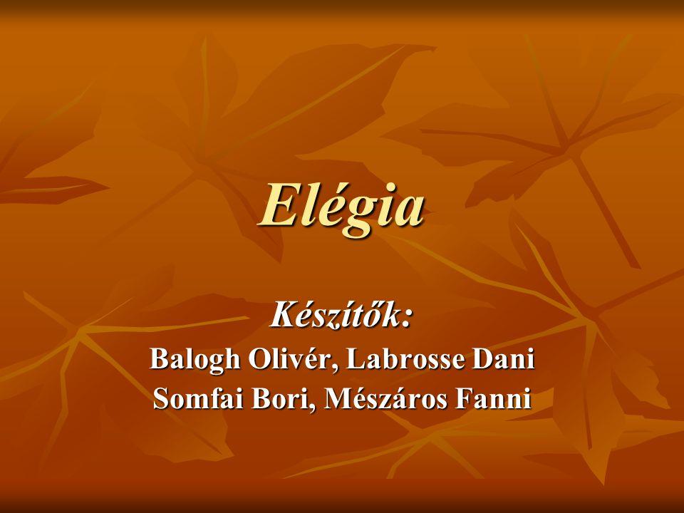 Elégia Készítők: Balogh Olivér, Labrosse Dani Somfai Bori, Mészáros Fanni