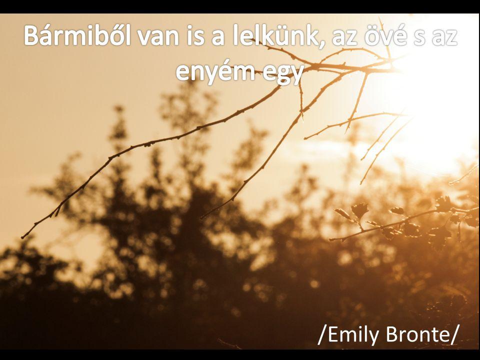 /Emily Bronte/
