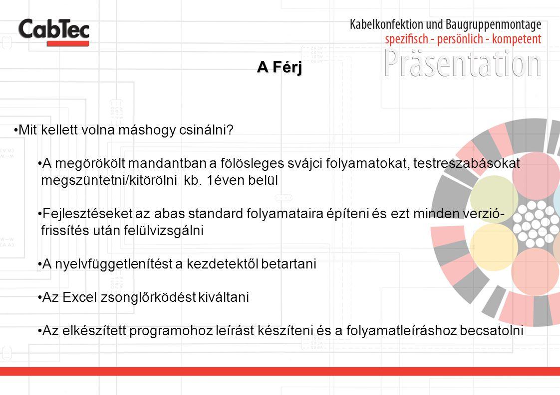 A Férj •Mit kellett volna máshogy csinálni? •A megörökölt mandantban a fölösleges svájci folyamatokat, testreszabásokat megszüntetni/kitörölni kb. 1év