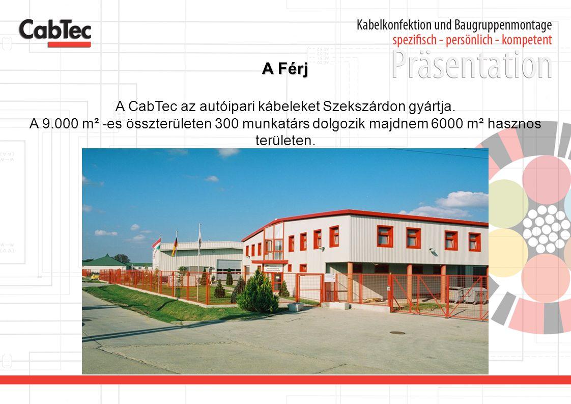 A Férj A CabTec az autóipari kábeleket Szekszárdon gyártja. A 9.000 m² -es összterületen 300 munkatárs dolgozik majdnem 6000 m² hasznos területen.