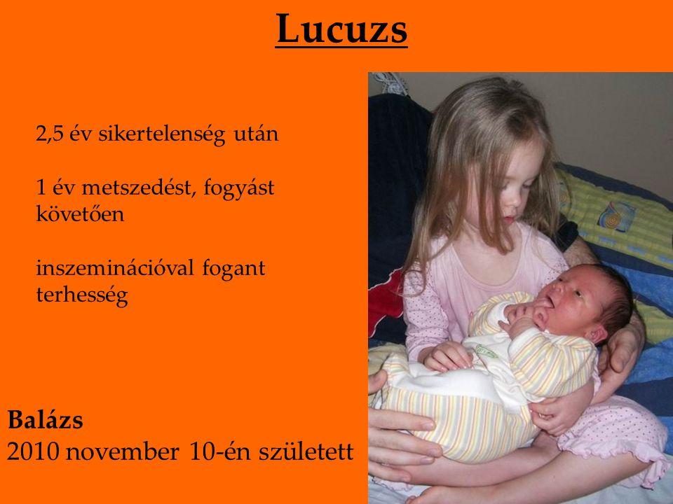Lucuzs 2,5 év sikertelenség után 1 év metszedést, fogyást követően inszeminációval fogant terhesség Balázs 2010 november 10-én született