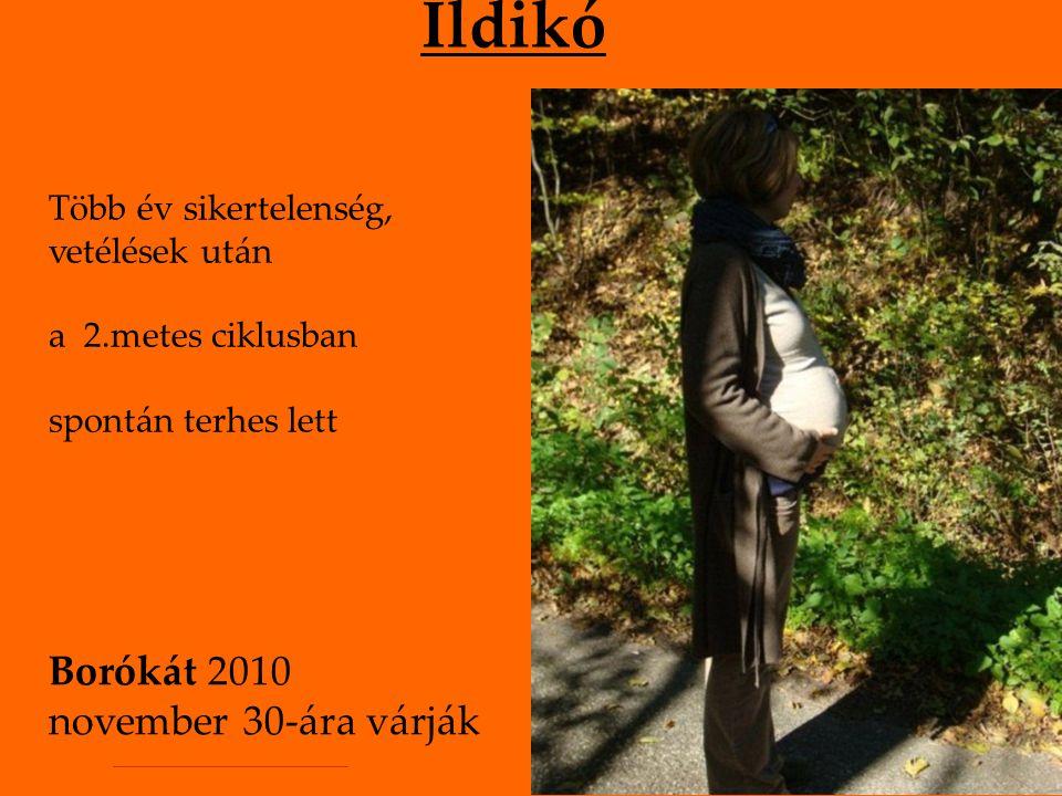 Ildikó Több év sikertelenség, vetélések után a 2.metes ciklusban spontán terhes lett Borókát 2010 november 30-ára várják