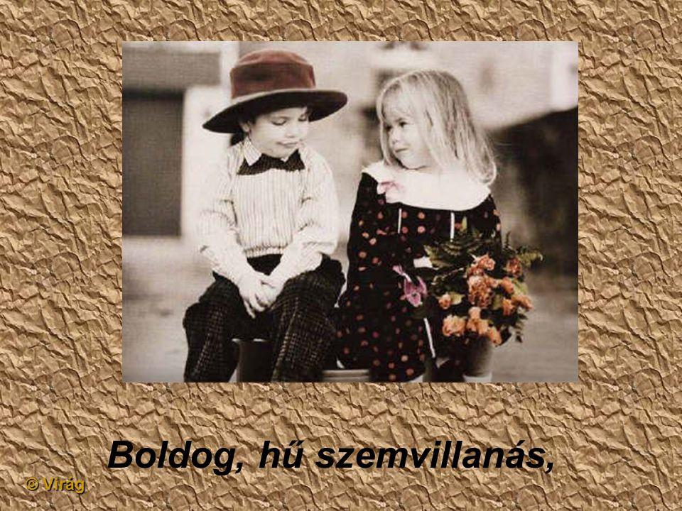 © Virág Néhány félénk vallomás,