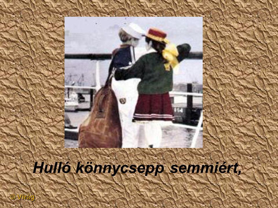 © Virág Néhány titkon írt levél,
