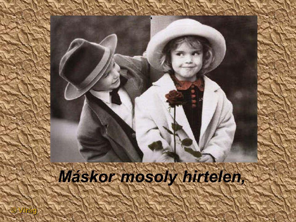 © Virág Hulló könnycsepp semmiért,