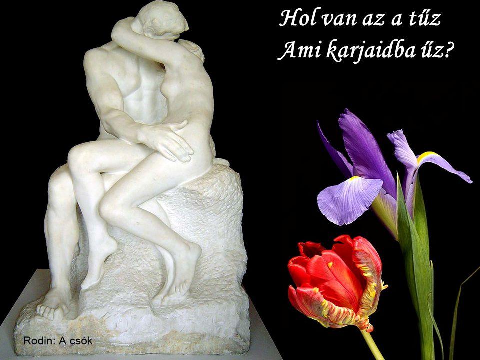 Rodin: Az örök tavasz Hol van az a tűz Ami karjaidba űz?