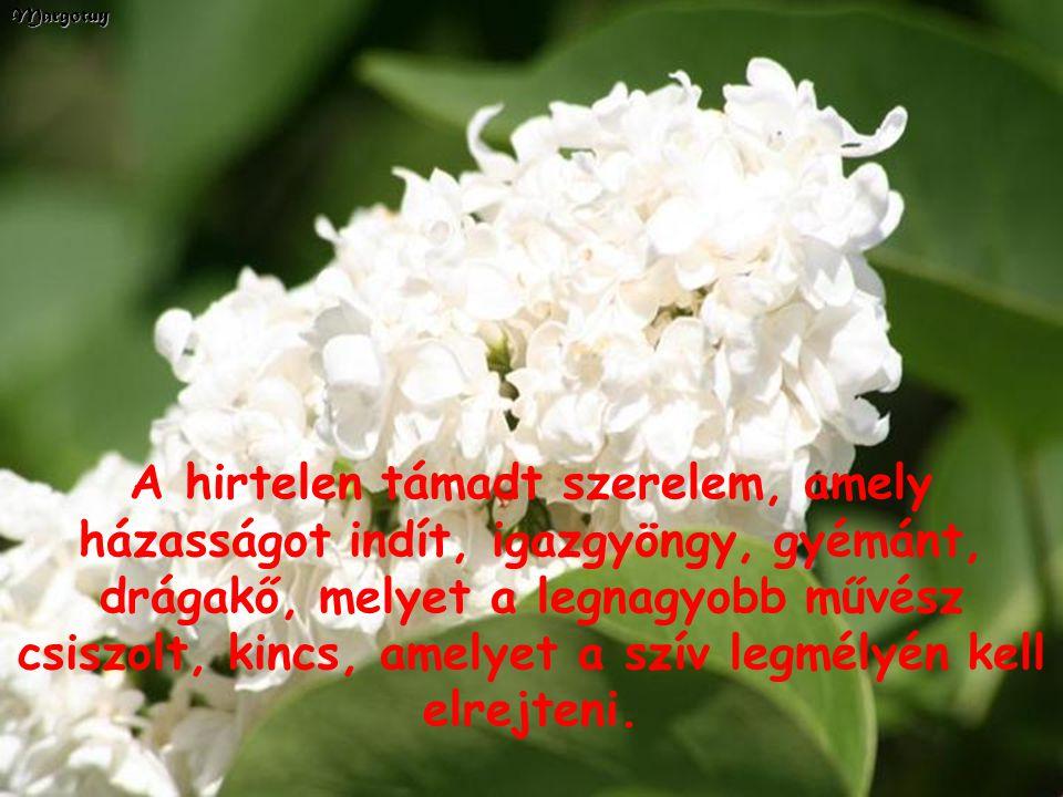Az erős és alkotó lélek nagy titka a feledni tudás.Margotuy