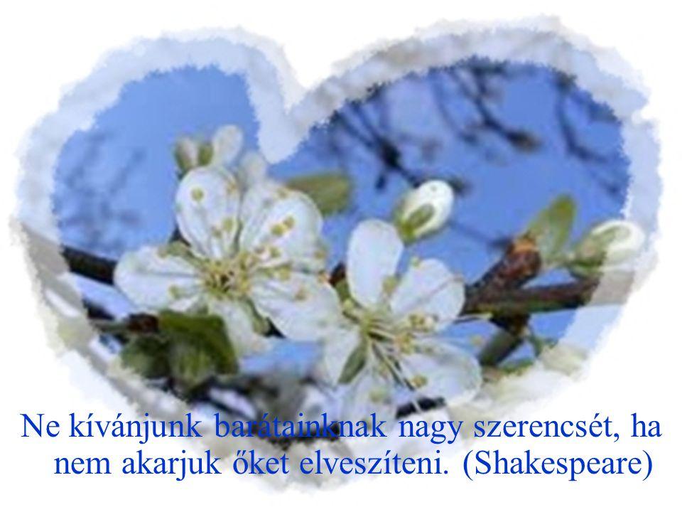 Barátom csak arra jó nekem, hogy bosszantsa azokat az ellenségeimet, akik a barátai. (Nietzsche)